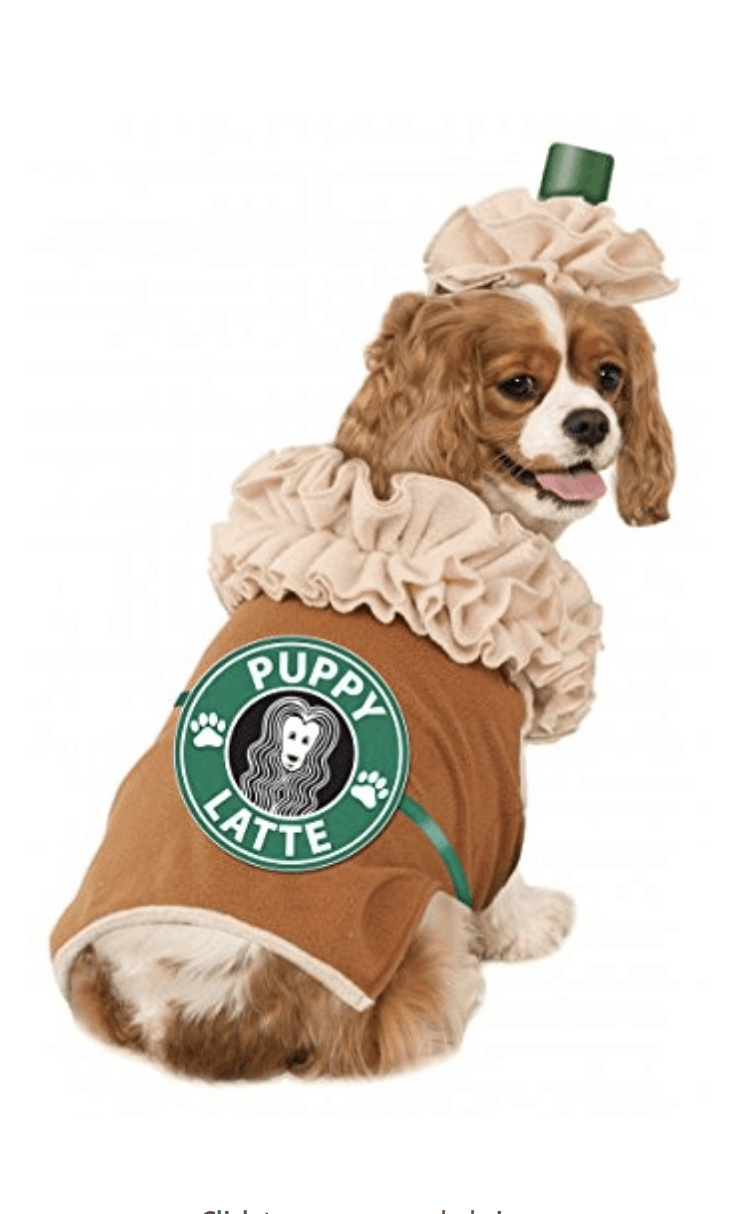 halloween dog costumes  sc 1 st  An Unblurred Lady & Halloween Dog Costumes Under $20 - An Unblurred Lady